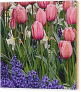 Tulips And Friends Wood Print