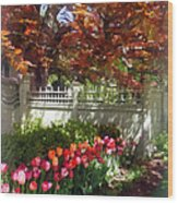 Tulips By Dappled Fence Wood Print