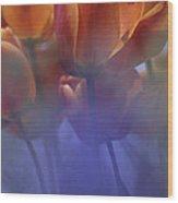 Tulips In Neighbors Garden Wood Print
