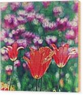 Tulips On Beautiful Bokeh Wood Print