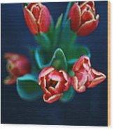 Tulips On Black Wood Print