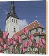 Tulips Outside Niguliste Church Wood Print