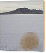 Tumbleweed Spinning Over The Bonneville Wood Print by John Burcham