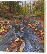 Tumbling Leaves Wood Print