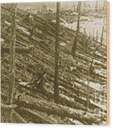 Tunguska Event, 1908 Wood Print