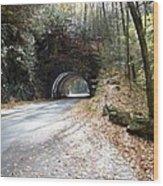 Tunnel Cades Cove Wood Print