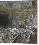 Tunnel With Abandoned Railtracks Wood Print