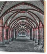 Tunnel With Arches Wood Print