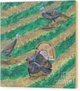 Turkeys In Field Wood Print