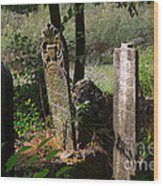 Turkish Cemetery In Rural Mugla Province Wood Print