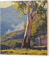 Turon Gum Tree Wood Print