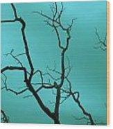 Turquoise Sky Wood Print