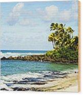 Turtle Beach Wood Print