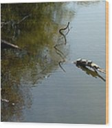 Turtles On The Pond Wood Print