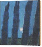 Tuscan Cyprus Trees Wood Print