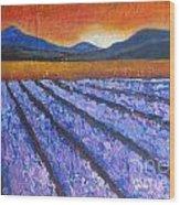 Tuscany Lavender Field Wood Print