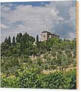 Tuscany Villa In Tuscany Italy Wood Print by Ulrich Schade