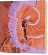 Tutu Swirls Wood Print by Denice Breaux