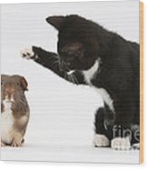 Tuxedo Kitten With Guinea Pig Wood Print