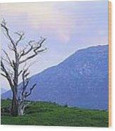 Twelve Bens, Connemara, Co Galway Wood Print