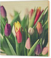 Twenty Colorful Tulips Wood Print