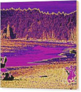 Twilight On La Push Beach Wood Print