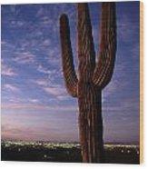 Twilight View Of A Saguaro Cactus Wood Print