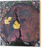 Twin Fallen Leaves Wood Print