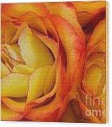 Twin Yellow Roses Wood Print