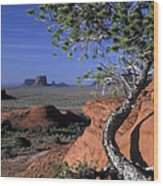 Twisted Tree Monument Valley Wood Print