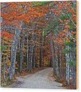 Twisting Road Of Fall Wood Print