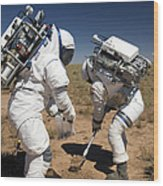 Two Astronauts Collect Soil Samples Wood Print by Stocktrek Images