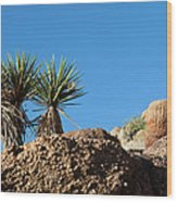 Two Bunch Gold Butte Wood Print
