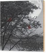 Two Cardinals In The Moonlight Wood Print