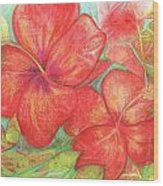 Two Hibiscus Blossoms Wood Print
