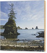 Two Hikers Walk On Beach With Sea Wood Print