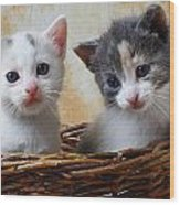 Two Kittens In Basket Wood Print by Garry Gay