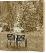 Two Lonely Chairs Wood Print