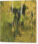 Two Palms Reflected In Water Wood Print