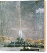 Two People By Buckingham Fountain Wood Print