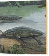 Two Prehistoric Platyoposaurus Wood Print