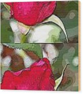 Two Rose Buds Wood Print