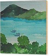 Two Schooner's Wood Print
