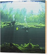 Two Scuba Divers In The Cenote System Wood Print by Karen Doody