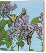 Two Swallowtails Wood Print