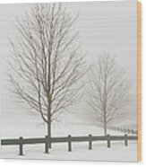 Two Trees And Fence In Winter Fog Wood Print