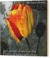 Two Tulips Shadow Scripture Wood Print