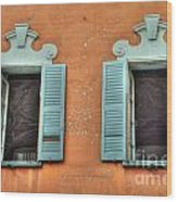 Two Windows Wood Print