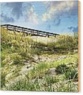 Tybee Island Dunes No.2 Wood Print