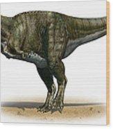 Tyrannosaurus Rex, A Prehistoric Era Wood Print